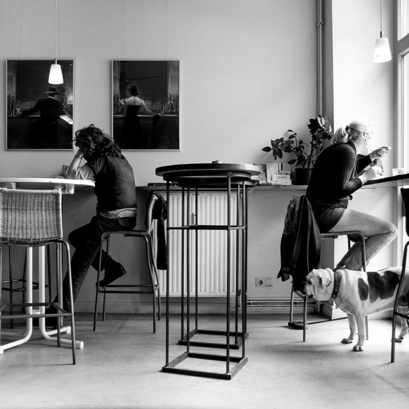 Dog's Life © Knut Skjærven