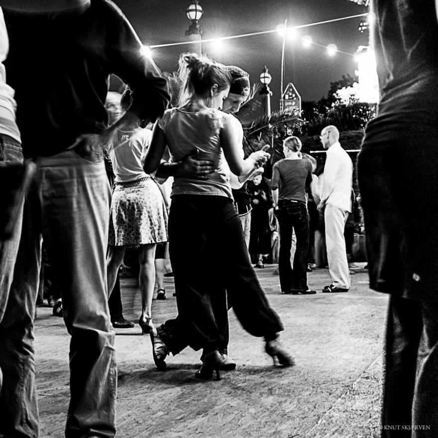 The Dance Partner © Knut Skjærven